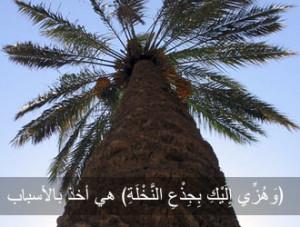 Качества верующей женщины (Священный Коран, 19:18-26)