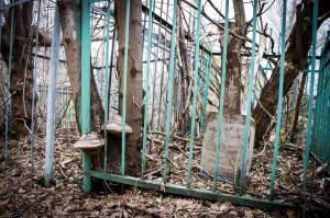 Субботник на заброшенном кладбище