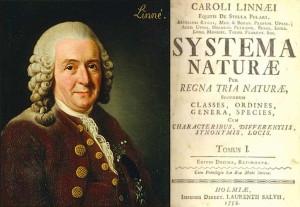 Ученые о Боге | Карл Линней