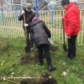 Акция по озеленению г. Ульяновска