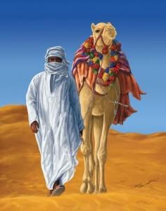 Верблюд меджнуна