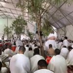 Паломники выехали для проведения времени в молитвах на горе Арафат.